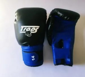 guantes-de-boxeo-competicion-10-12-y-14-onzas-D_NQ_NP_606460-MLA28515651962_102018-F